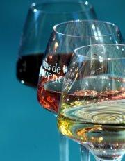 Primeira fotogarfia publicada no artigo André Logaldi ministra aula de Degustação de Vinhos Rosé
