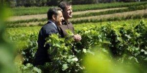 Primeira fotogarfia publicada no artigo Sarkozy (o presidente frances que não gosta de vinhos) ganhou uma magnum do Languedoc e um rótulo ofensico de um produtor de Beaujolais