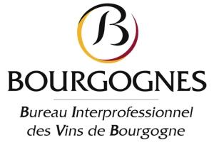 Primeira fotogarfia publicada no artigo Wine Tour 2012 - Descobrindo os vinhos da BourgogneBourgogne
