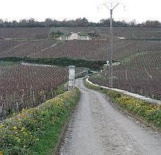Primeira fotogarfia publicada no artigo A Borgonha e seus vinhos